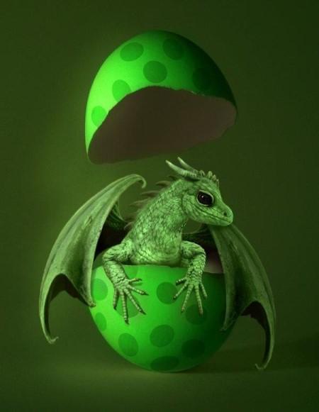 дракон удачи
