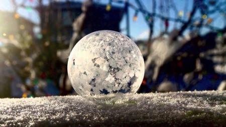 мыльный пузырь на бревне