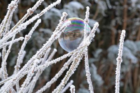 мыльный пузырь на траве