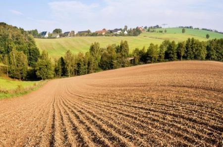 Взаимодействие состихией земля